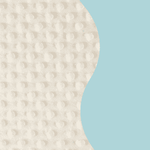 Polar Minky